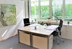 Scaune ergonomice potrivite pentru birou