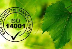 Tot ce trebuie sa stiti despre standardul ISO 14001