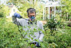 La ce sunt utile fungicidele?